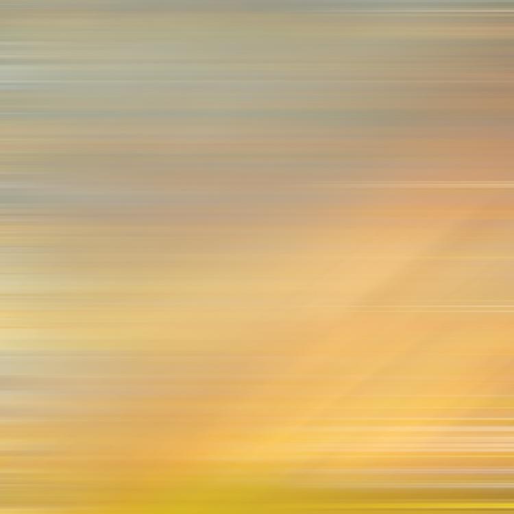 dawndrop_06.jpg