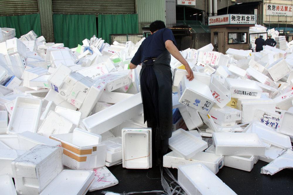 Out back, Tsukiji