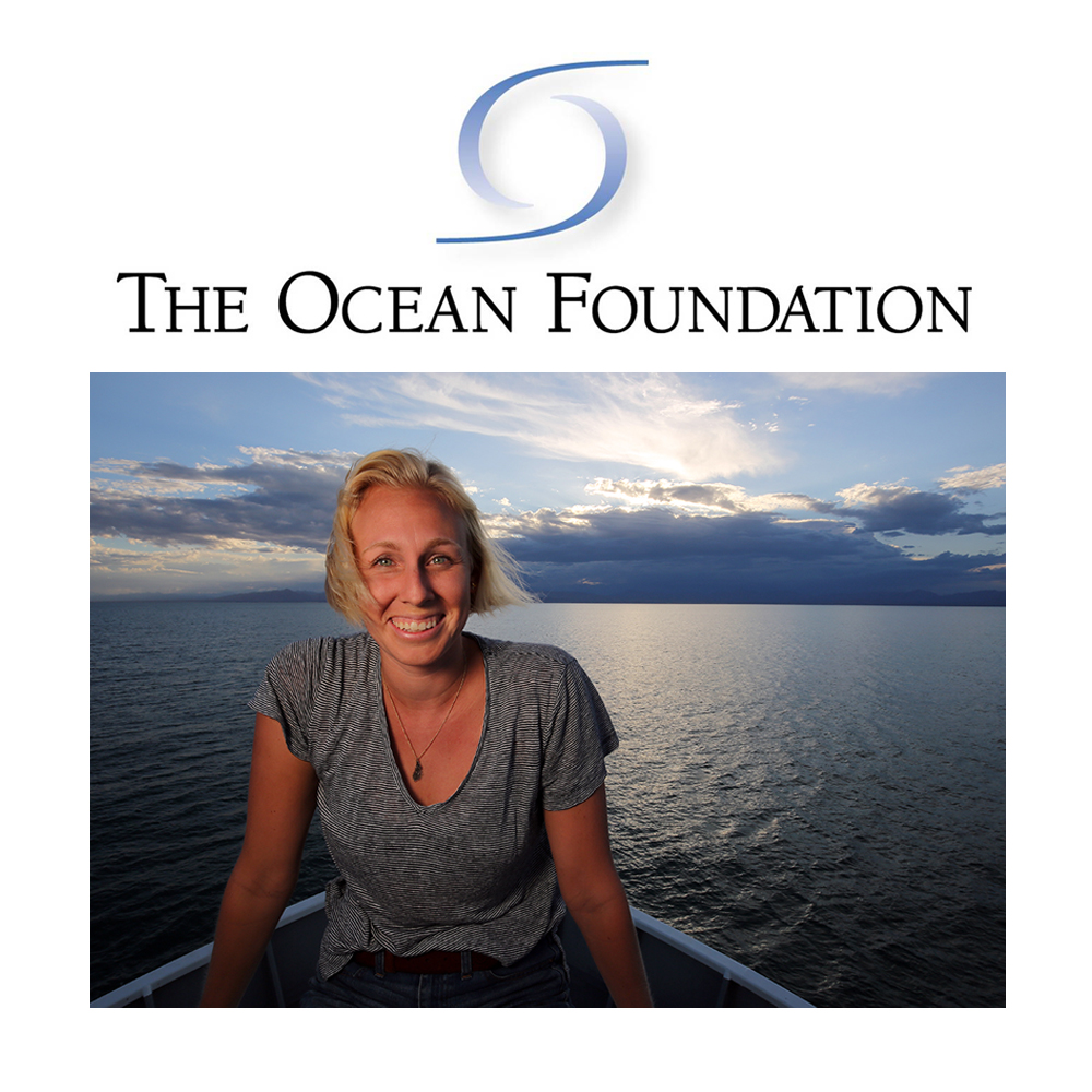The Ocean Foundation: Women in the Water Feature