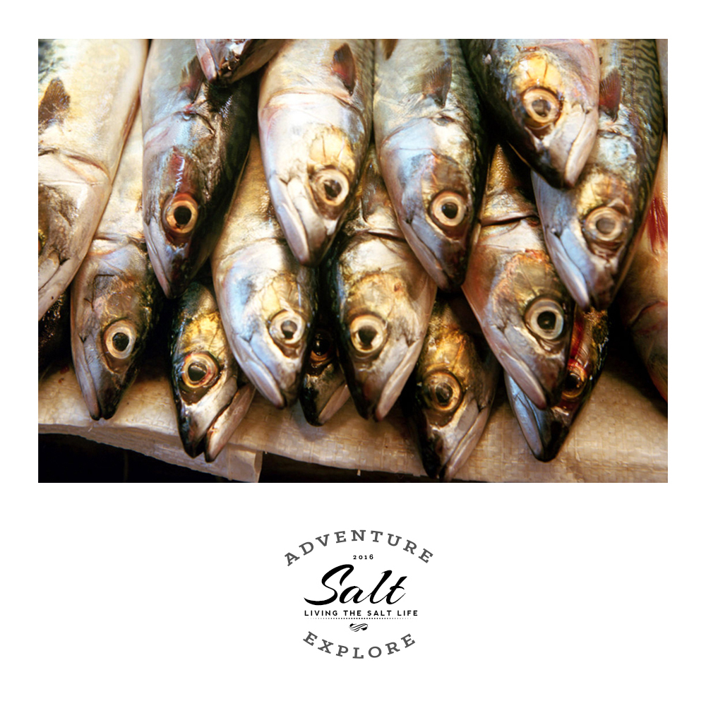 The Fish Market Chronicles: Read Salt Magazine