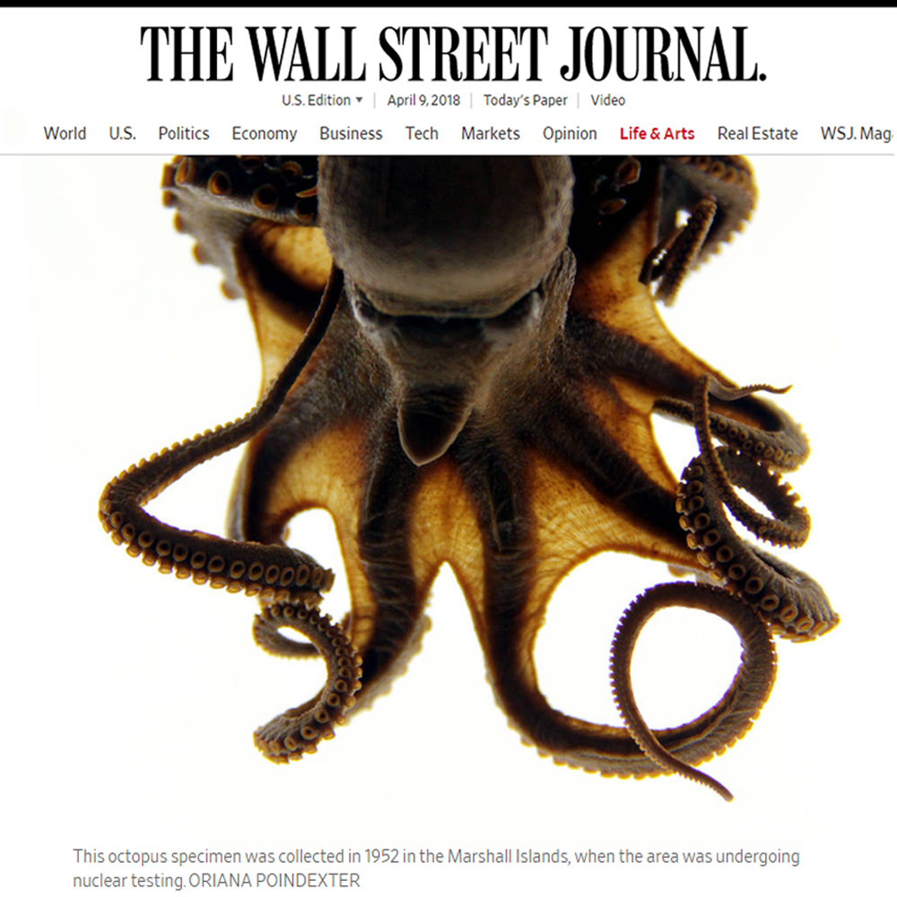 The Wall Street Journal: Art of Science