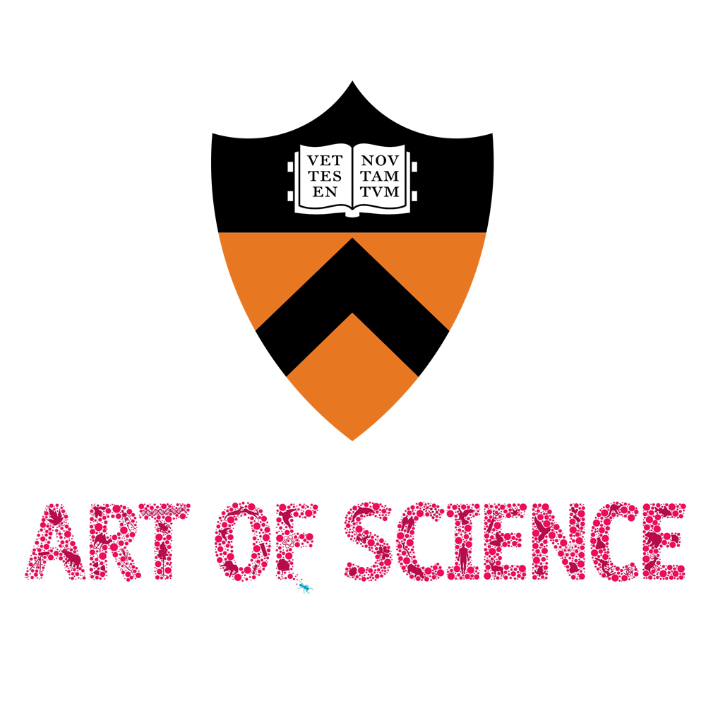 Princeton University: Art of Science Exhibition