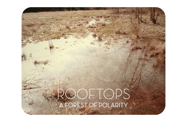 rooftops_shot_1.jpg