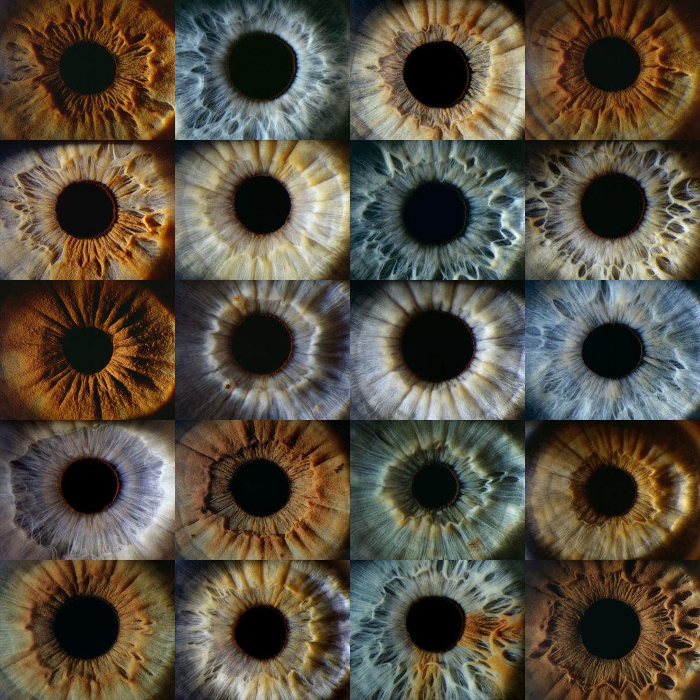 Iris2020 copy.jpg