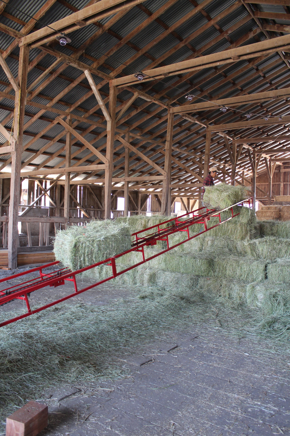 Loading hay into the barn.