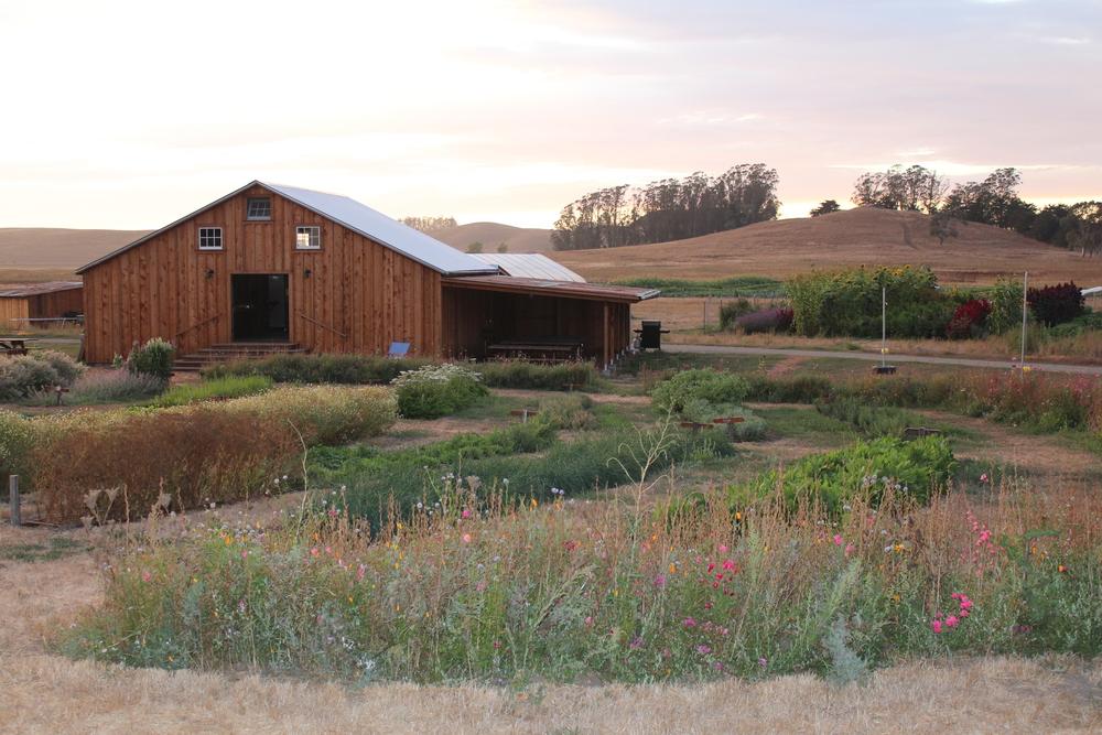 The CSA barn