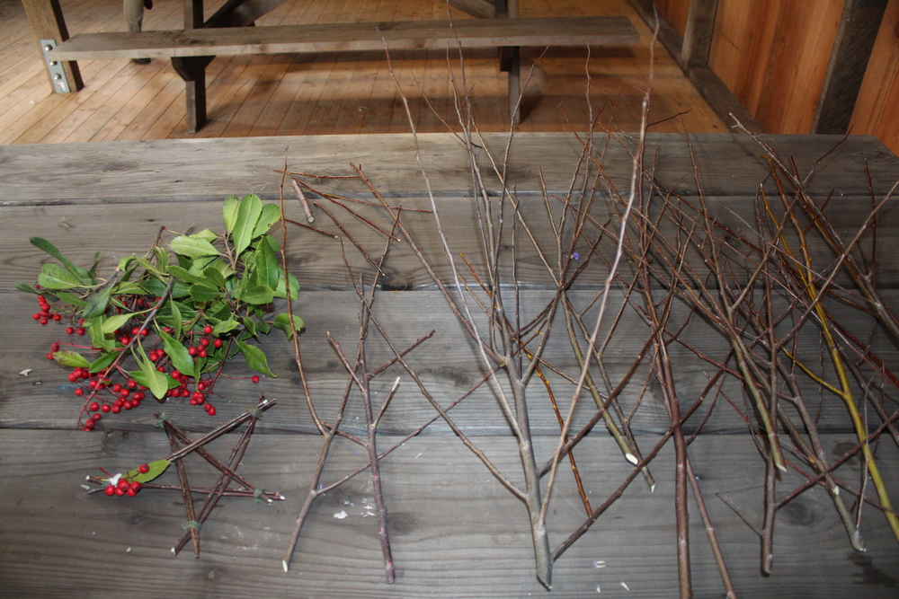 Last week's craft: stick stars made of willow branches collected by the pond and madrone berries from our yard