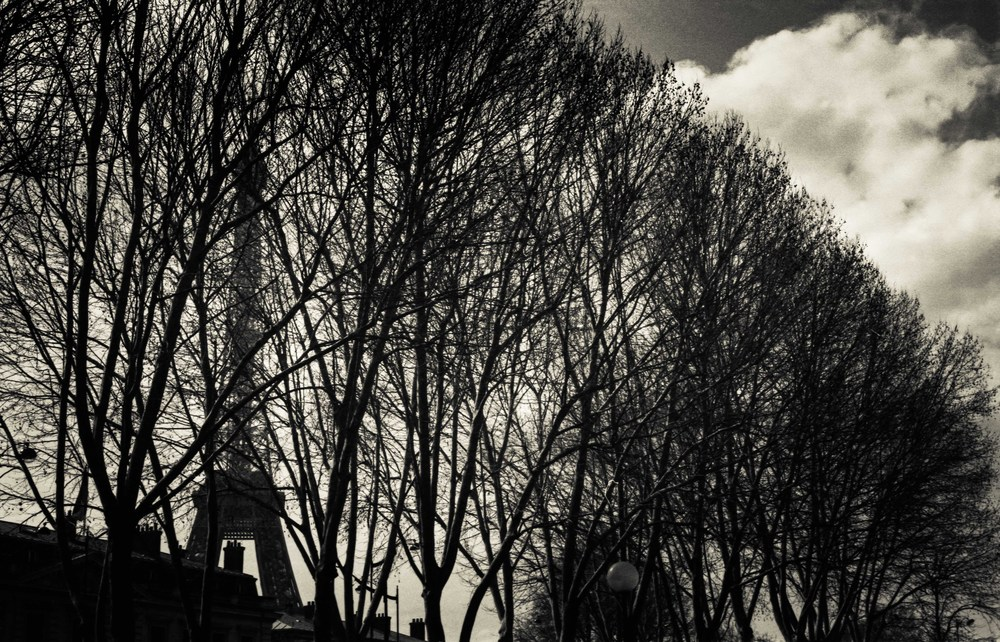 Paris13010.jpg