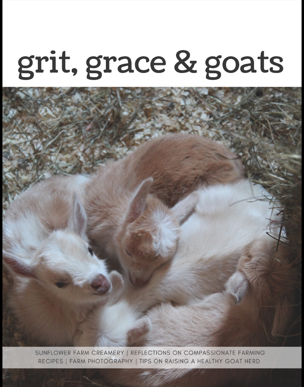 ORDER ON AMAZON HERE!  Grit, Grace & Goats opens an intimate window into life on a Nigerian Dwarf goat farm in Maine. Mini memoirs allow readers to step into a day at the farm and come away with a new perspective on life. Even city folks will find experiences that translate to paths to feeling more human. The delightful collection also includes the creamery's delicious recipes for goat milk chèvre, feta, yogurt, cajeta, caramels and fudge. This issue is full of heart melting photos taken by the author Hope Hall and also showcases photographer Catherine Frost, who shot stunning portraits of each member of Sunflower Farm's goat herd. Grit, Grace & Goats is the perfect gift for anyone who loves goats and wants to learn more about local, humane farming. It includes nitty-gritty tips that will help if you plan to make the leap into tending your own herd and plenty of big-picture thinking to remind you why you dream of small farming! The book even includes instructions for making a 3D felted goat sculpture and a knitting pattern for making a goat sweater for those who are looking for goat inspired crafting ideas.   Part 2 of the collection, due out August 2018, will include exciting coverage of the ups and downs of kidding season. 50 Nigerian Dwarf goat kids are expected to arrive over two weeks in April! You can also look forward to lots of tasty recipes highlighting goat milk products, a story about goat yoga, a design plan for building a low waste hay feeder, tips on building a licensed cheese kitchen, advice for when kidding does not go like clockwork and more goaty goodness. Unable to wait for the next collection to be published? Check out the Sunflower Farm YouTube channel and live barn cam or even better, head to Maine for a visit! You can visit our farm website at www.sunflowerfarm.info  Published March 2018 - Sunflower Farm Creamery - Cumberland, Maine - 68 pages full color - available in print and on Kindle as a download - All proceeds go to taking care of the goat herd on our No Cull Farm.  Thanks so much for ordering. A few dollars from each order of the print softcover or Kindle copies directly support the farm's expenses and allow us to continue our No Cull approach.