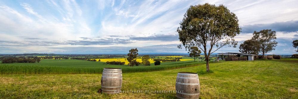 20160917-Tallis-Wines-2016-©CThorne-THN_0485-Pano.jpg