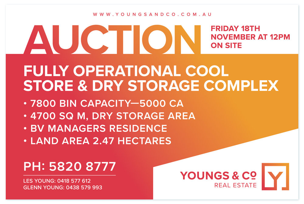Youngs-&-Co-SIGNS-AUCTION-BOARD2.jpg