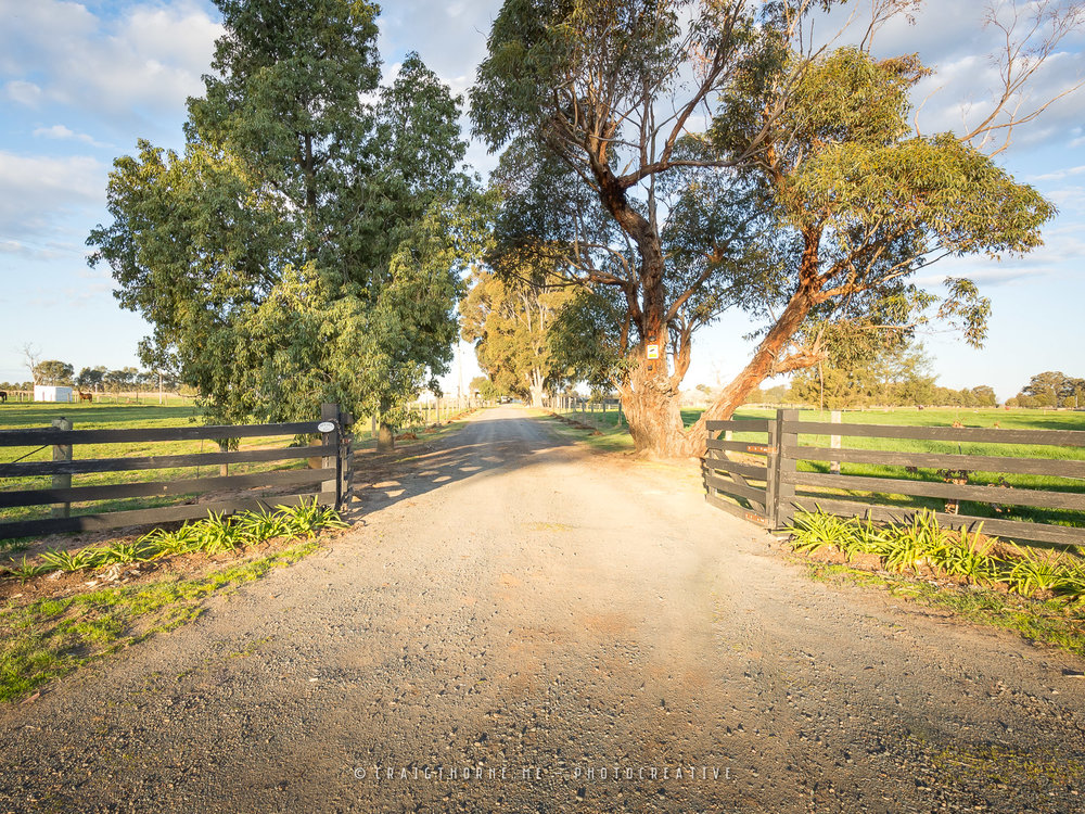 20180904-01-565-Downer-Road-Tatura-East-©CT-THN_0769.jpg