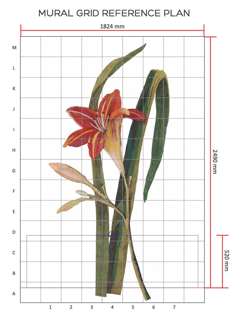 Giant-Lily-grid-w.jpg
