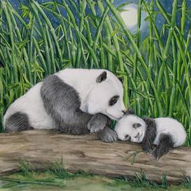 Lets_Go_To_Sleep_Little_Panda_M_Dawson.jpg_08130.jpg_cde632bcab3b5e983b6fb5012b8d8be5_w273_h273_cp.jpg