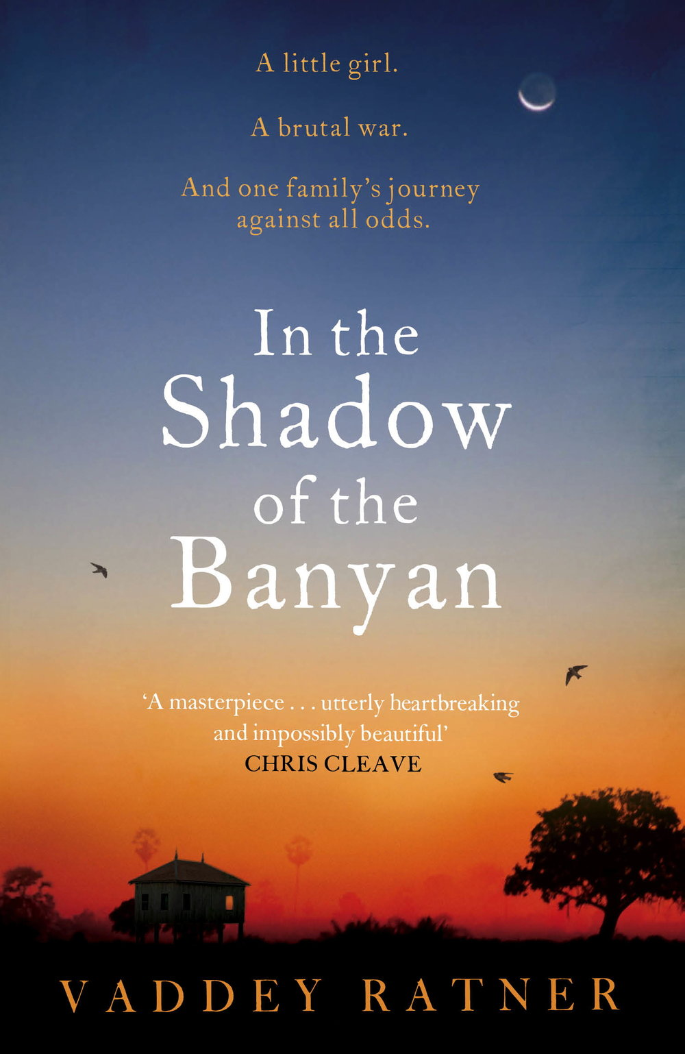 in-the-shadow-of-the-banyan.jpg