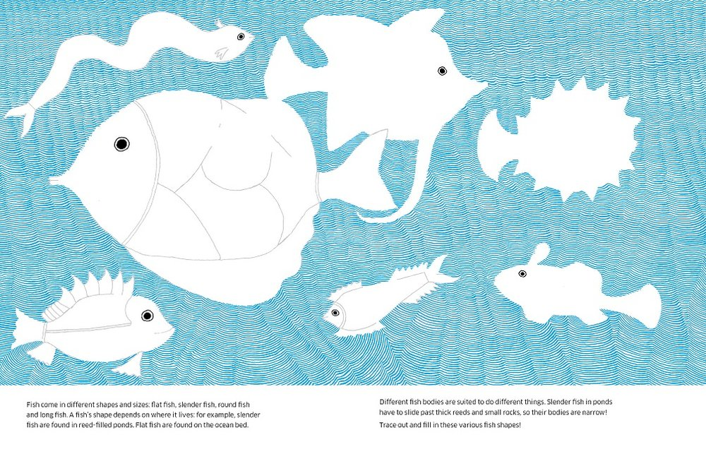 8 ways to draw a fish spread_LR2.jpg