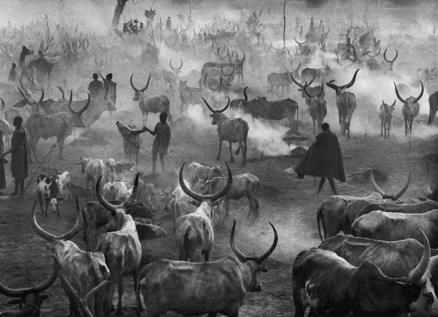 sebastiao-salgado-south-sudan-from-africa-the-dinkas-2006.jpg