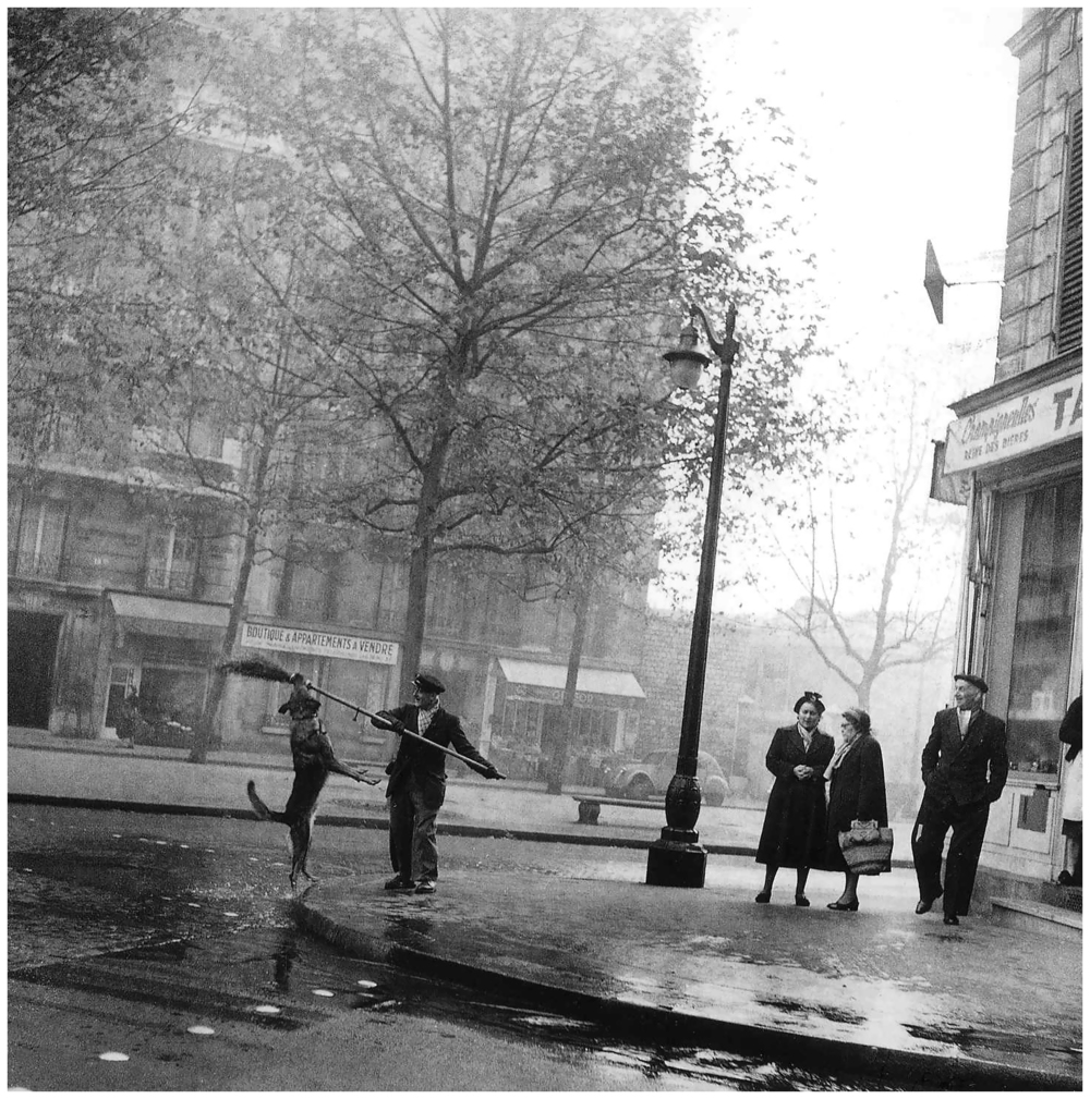 robert-doisneau-the-tobacconist_s-dog-14th-arrondissement-1953.jpeg