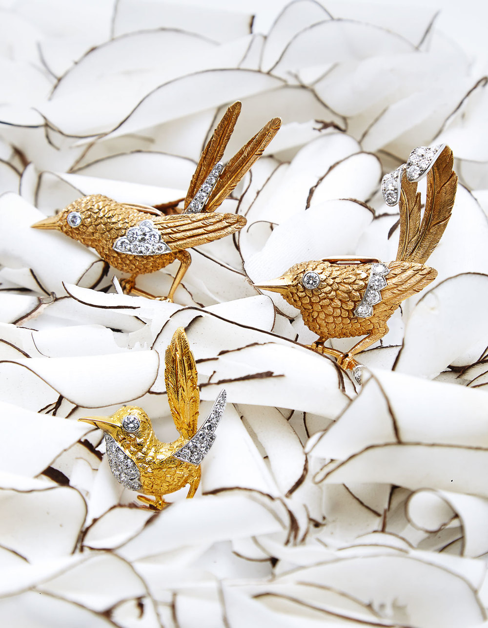 Cartier-birds-copy.jpg