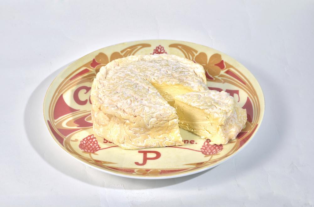Cheese1 UMB.JPG