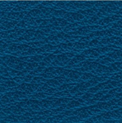 Nassa Ocean Blue