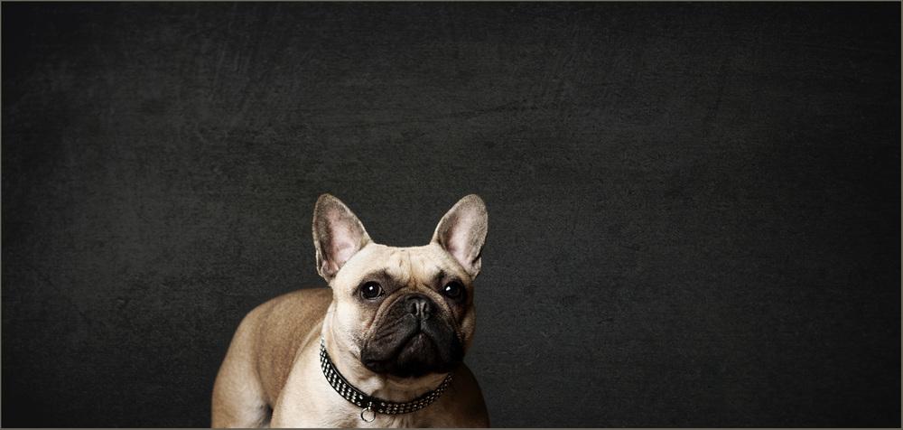 nottingham-portrait-photographer.034.jpg