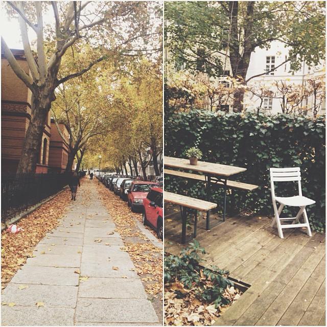 23/10/2013 •Halli hallo! Settling in my apartment, love the garden. It's 21 degrees warm autumn.