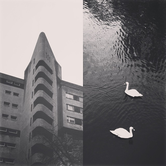 23/11/2013 • Brutalist architecture and swans by the river Spree