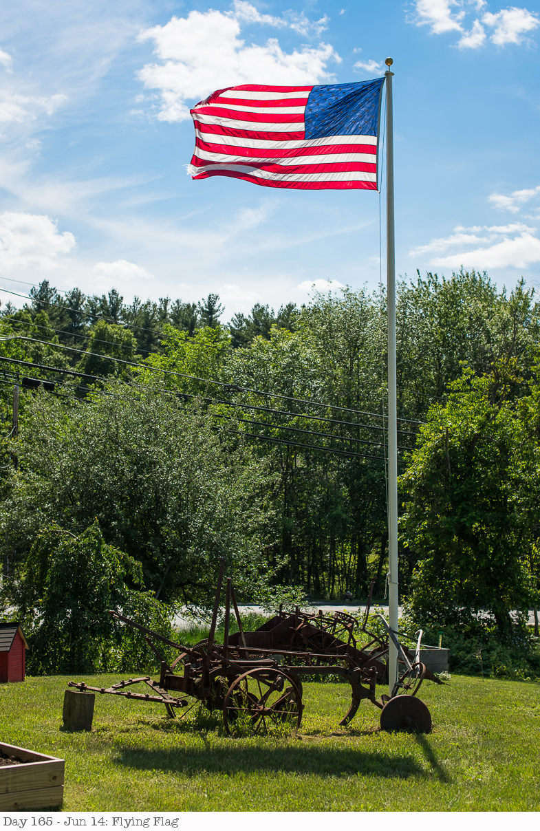 Day 165 - Jun 14- Flying Flag.jpg