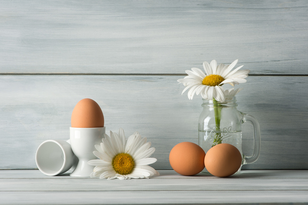 Still Life with Eggs and Daisies
