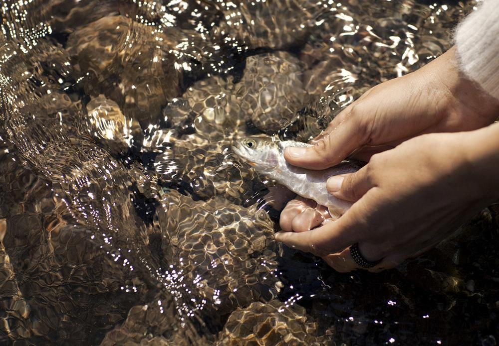 emily-nathan-montana-11-flathead-river-fishing.jpg