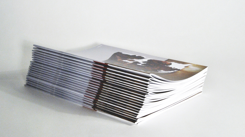 Purchase a print edition of Issue 1
