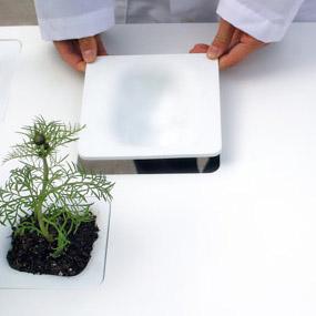 NONdesign's versatile, non-flat topi tables