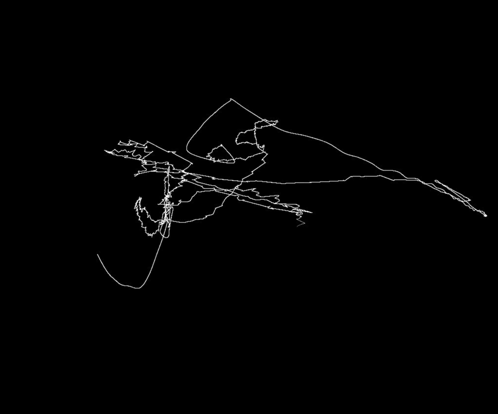 drawing-with-motion-gabriel-cohen