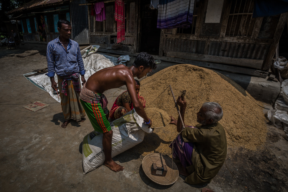 Taroni sells his rice to local buyers who come to his house with a scale and fill up bags with his rice.
