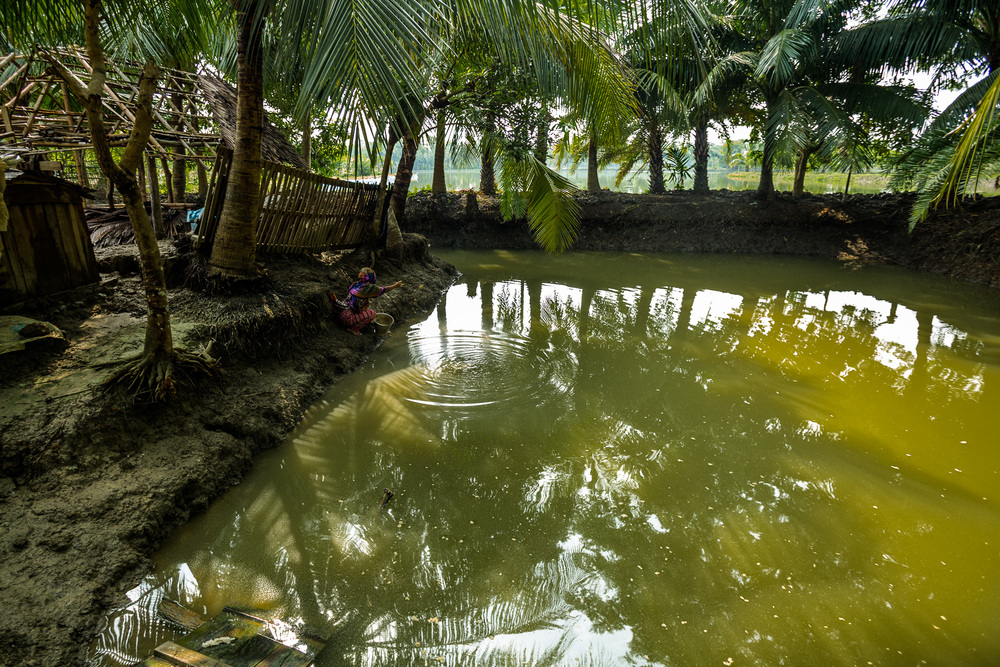Ruma Begum, 28, a fish farmer in southern Bangladesh, feeds her fish in one of her three fish ponds.