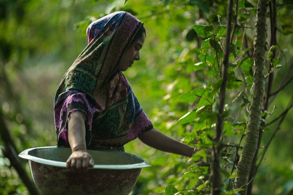 Through training funded by USAID Ruma Begum, 28, learned about farming vegetables next to her fish ponds and how to improve her family's nutrition.