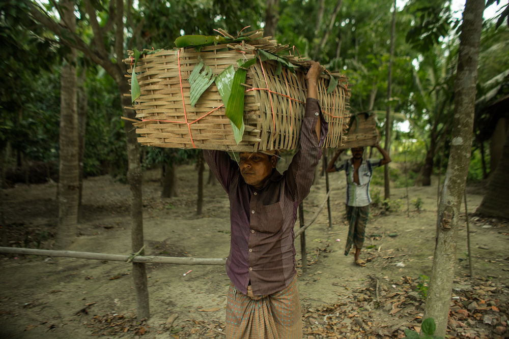 Sajeda's flowers are transported from her farm via woven baskets to a local flower buyer's cart who then takes them to the local market. Photo by Josh Estey