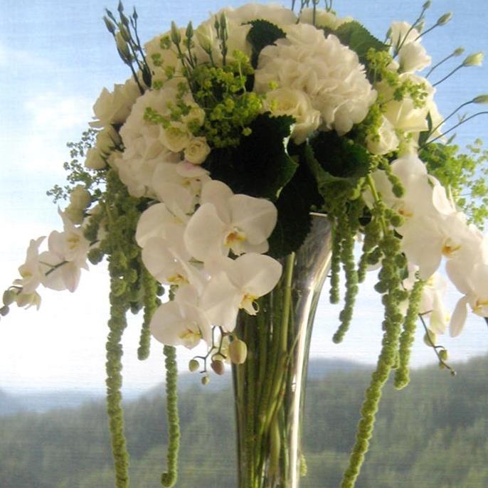 floral homepg.jpg
