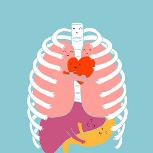 BIODETOX DAY 9: Organs of Detox: LIVER      BIODETOX DAY 10: Organs of Detox: LARGE INTESTINE      BIODETOX DAY 11: Organs of Detox: LUNGS      BIODETOX DAY 12: Organs of Detox: KIDNEYS      BIODETOX DAY 13: Organs of Detox: SKIN      BIODETOX DAY 14: Organs of Detox: Thyroid      BIODETOX DAY 15: Organs of Detox: Gut~Brain Connection