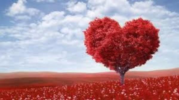 Love_.jpeg