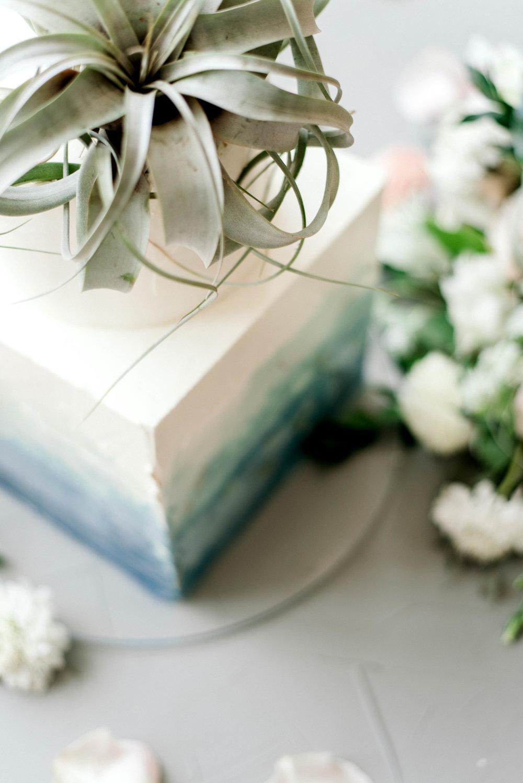 Lyons-Events-Wedding-Cake-Air-Plant-Succulent