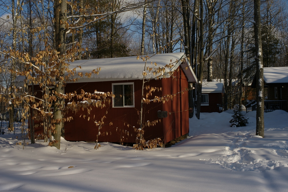 Cabin in winter.jpg