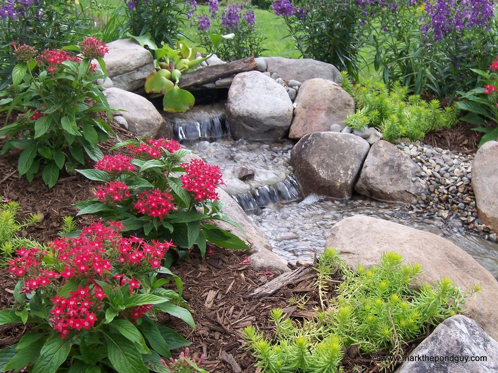 baby pondless from Mini Cascade Falls Kit.jpg
