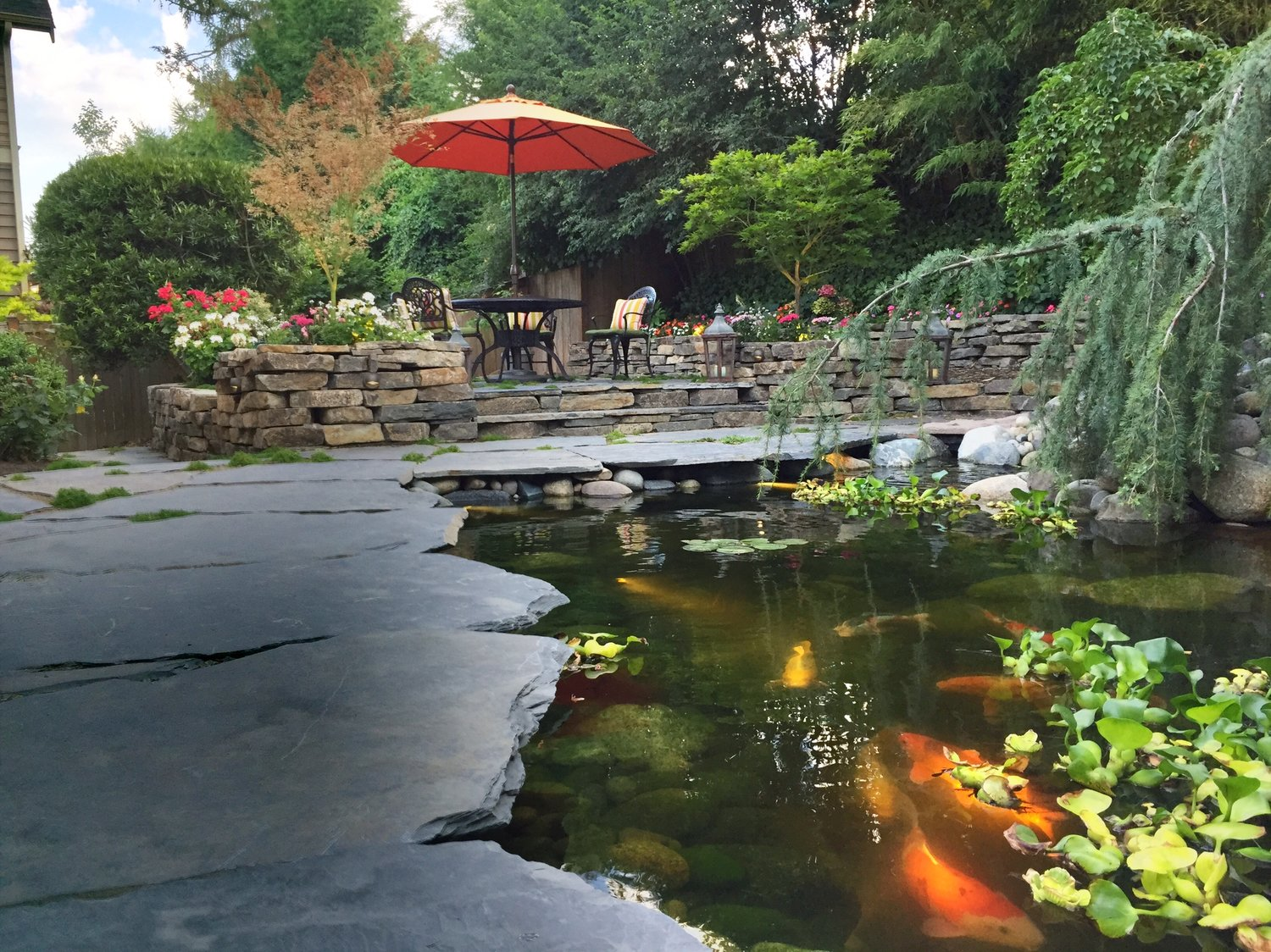 Water fountain pump care - Summer Pond Maintenance