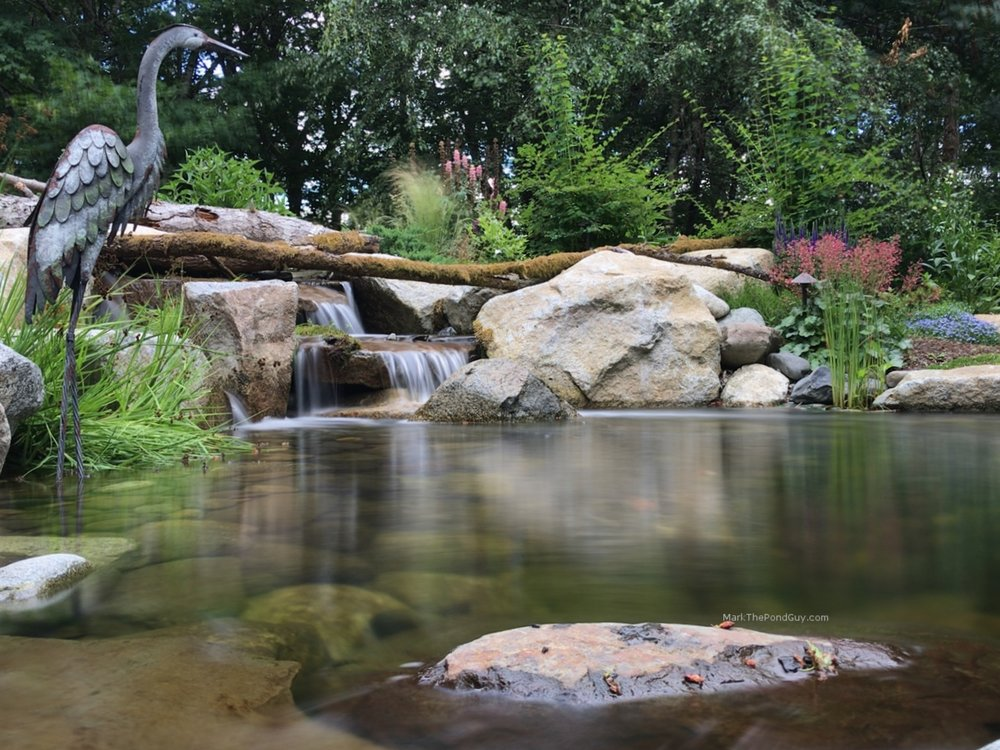 Mark The Pond Guy is Washington State's premier water feature designer!