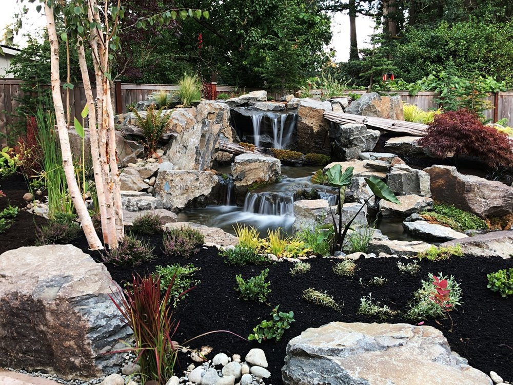 Custom Pond + Landscaping