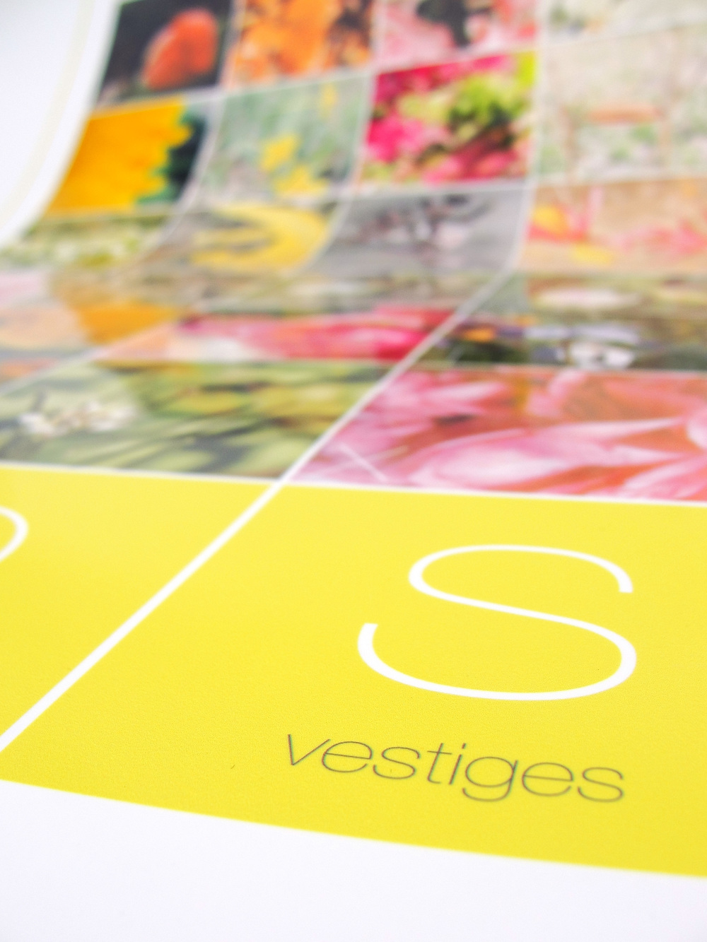 vestiges4.jpg