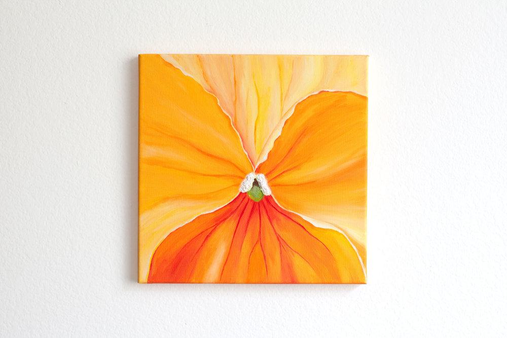 orange-pansy.jpg