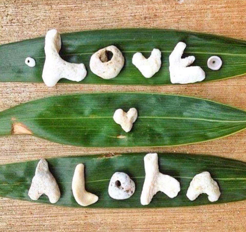 Love & Aloha.jpg